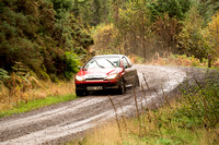 Cambrian Rally 2013 SS8-16