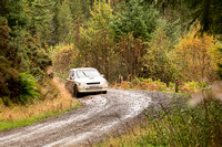 Cambrian Rally 2013 SS8-17