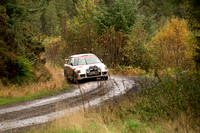 Cambrian Rally 2013 SS8-6