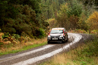 Cambrian Rally 2013 SS8-4