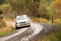 Cambrian Rally 2013 SS8-12