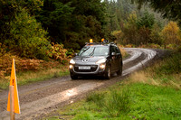 Cambrian Rally 2013 SS8-2