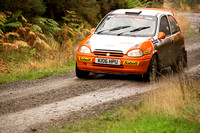 Cambrian Rally 2013 SS8-10