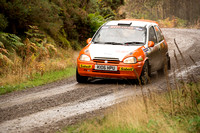Cambrian Rally 2013 SS8-9