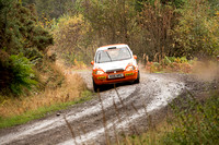 Cambrian Rally 2013 SS8-8