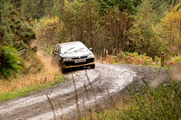 Cambrian Rally 2013 SS8-13