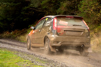 Cambrian Rally 2013 SS8-5