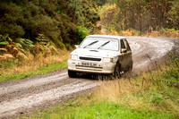 Cambrian Rally 2013 SS8-18
