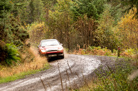 Cambrian Rally 2013 SS8-15